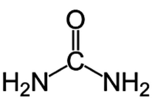 chemische Strukturformel des Harnstoffs